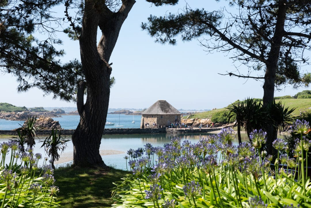 photo-moulin-de-Birlot-île-de-bréhat